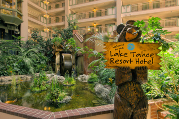 Welcome To The Lake Tahoe Resort Hotel Bear