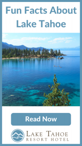Read fun facts about Lake Tahoe's natural landscape now